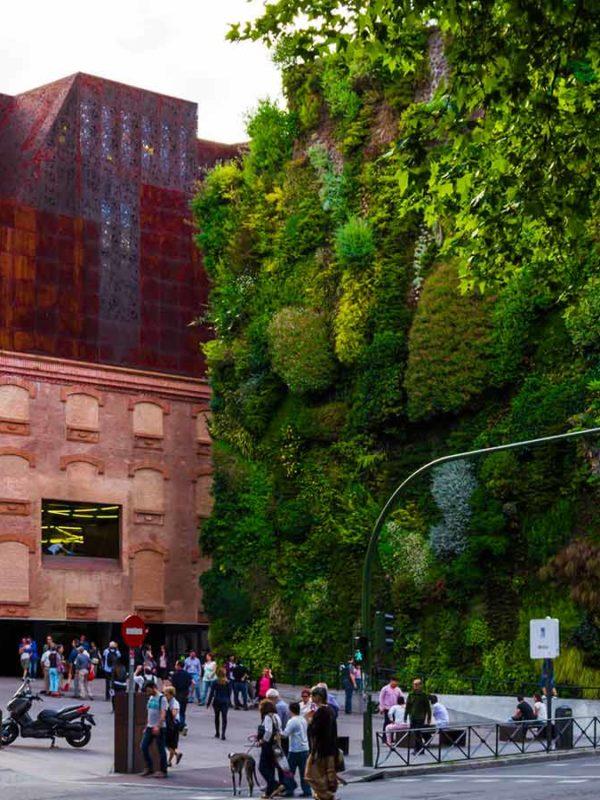 Неделя архитектуры в Мадриде (фото)