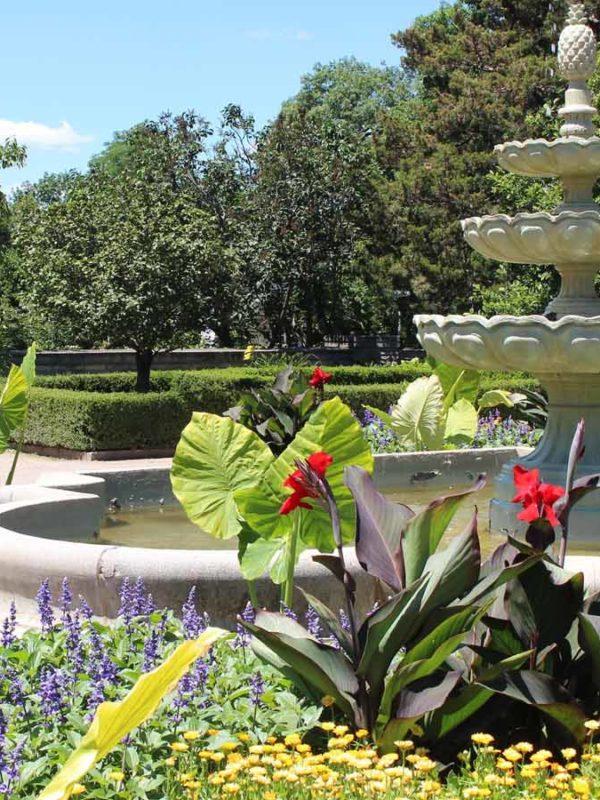 Достопримечательности Мадрида: Королевский ботанический сад