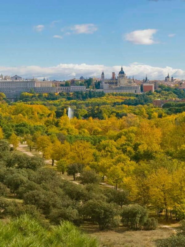 Парк Каса де Кампо в Мадриде: экскурсия